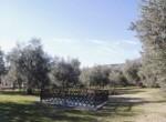 Villa a Montecatini (18)