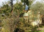 villa colline Camaiore (3)