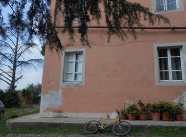 Palazzo rosa (26)