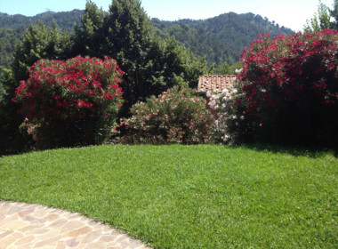 villa with views near Camaiore (4)
