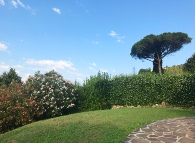 villa with views near Camaiore (6)