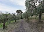 villa liberty_Lucca (2)